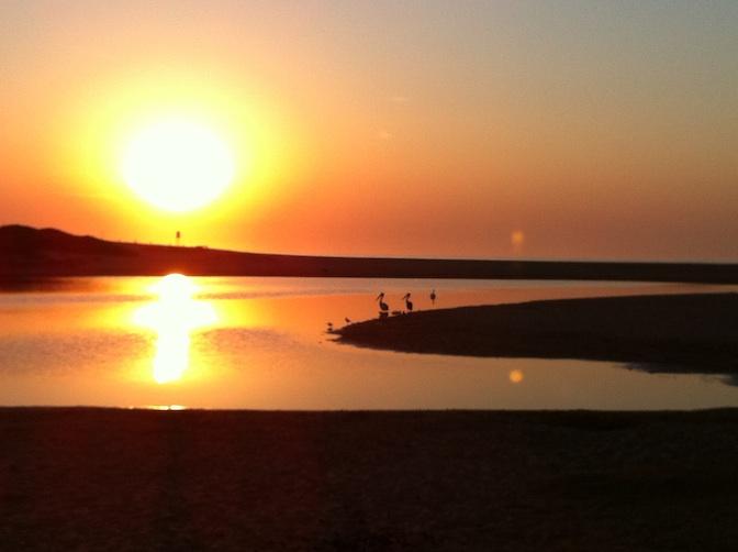 Image of dawn at Wamberal Lagoon