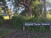 Looking up towards the entrance to Benjamin Parker Reserve