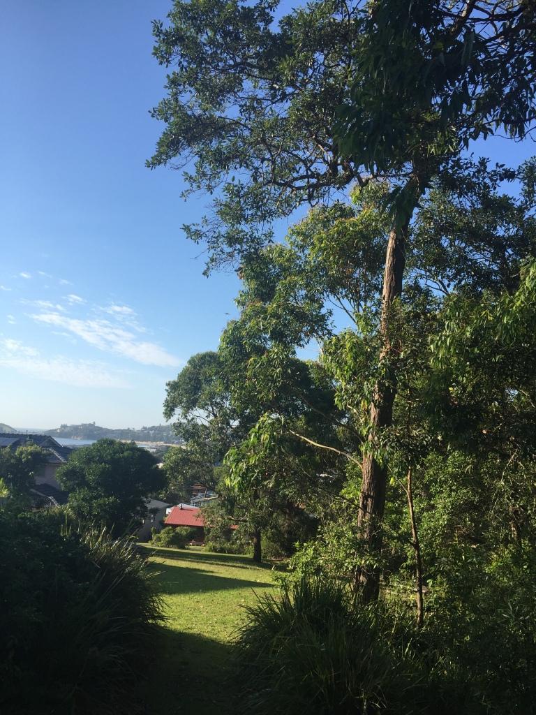 Benjamin Parker Reserve Wamberal - looking south (1)